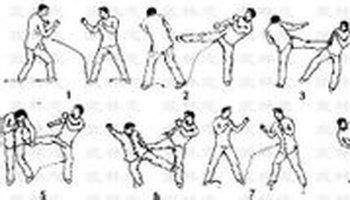 左腳向體側前方直線踹出,腿充分伸直,腳掌正對攻擊目標,著力點在腳跟圖片