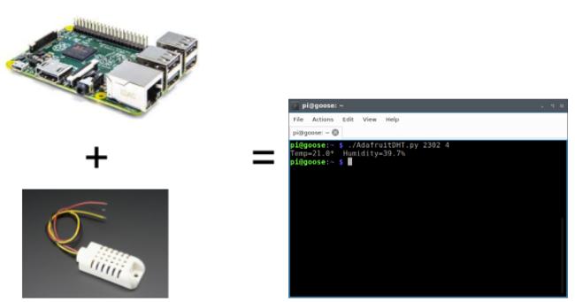 Raspberry Pi, sensor, and Python code