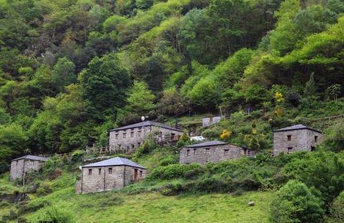退休老人花36万买下一个废弃的村子