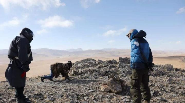 为啥西藏500公里的无人区千万不要去